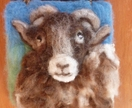 New Zealand  Ram  -  sheeps wool - wool art piece  - Natural gift  - needle felted