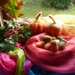 Autumn wool pumpkins and acorn - NZ wool - Waldorf - Needle felted