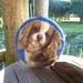 Wool dog - NZ wool - Needle felted - dog lovers gift