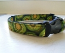 Hand made dog collar in Kiwi fruit fabric.