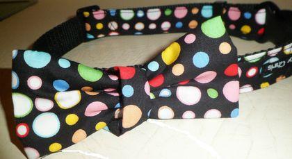 Handmade bow tie collar.