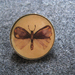 Moth pin in vintage brown