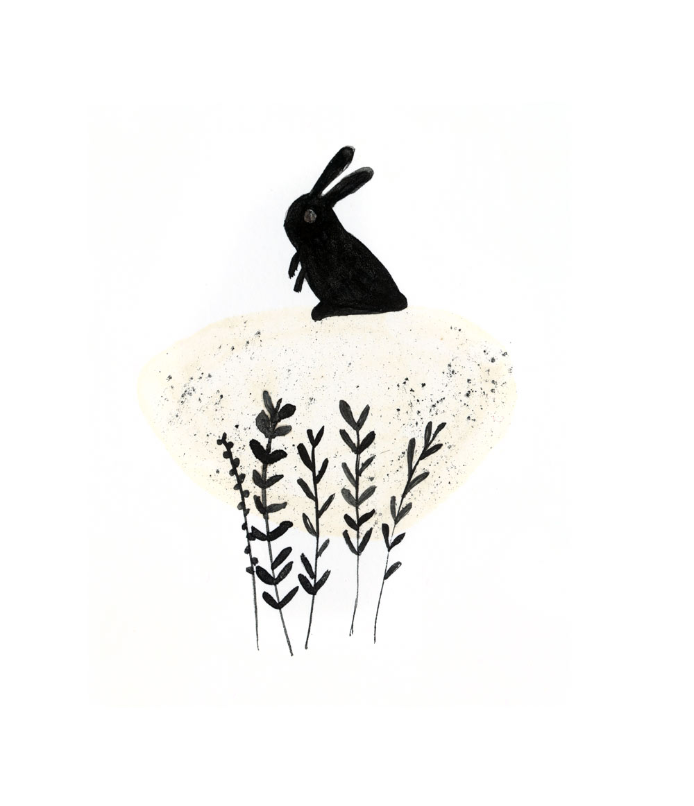 Hare illustration - photo#26