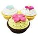 Vanilla Cup Cake Lip Balm - 10ml - NZ Natural