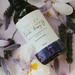 Lavender Massage Oil - NZ Natural - 100ml