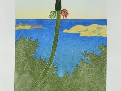 Hokianga Nikau - print by Allan Gale