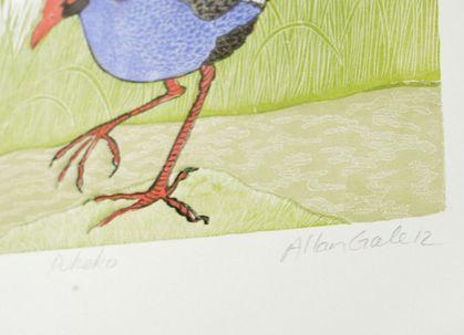 Pukeko print by Allan Gale
