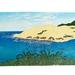 Hokianga Harbour - print by Allan Gale