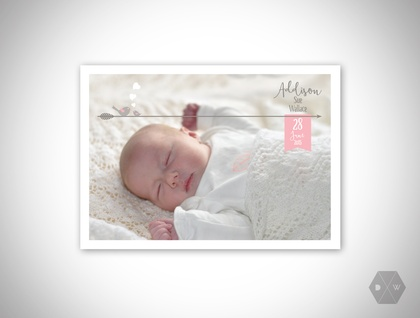 Baby Announcement & Thank You Postcards - Woodlands Birds - Set of 50 Postcards