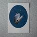 Ruru Print - A4 - Unframed