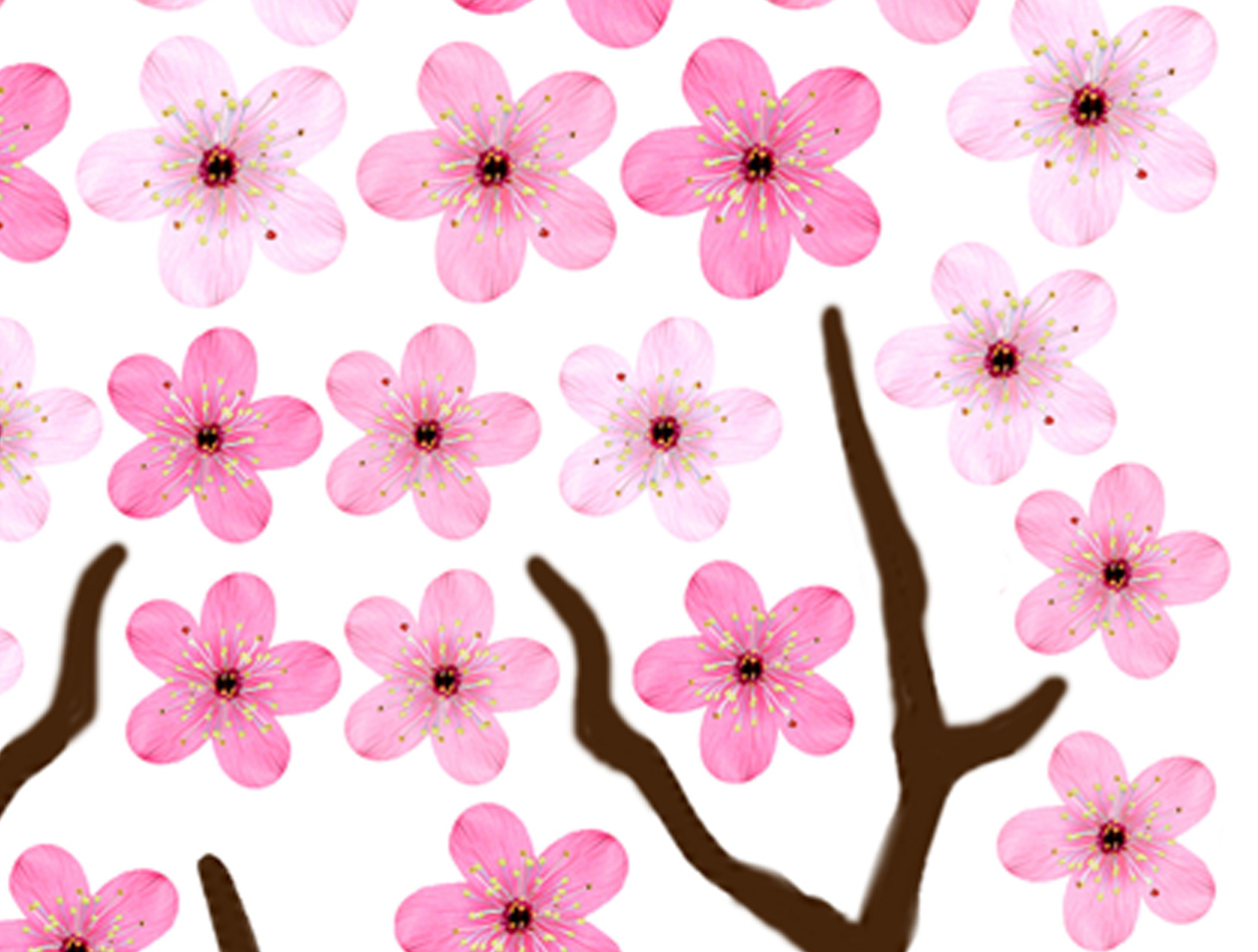 Wafer Paper Cherry Blossom