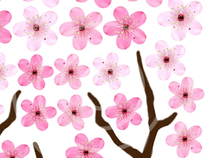 Edible wafer paper Cherry Blossom