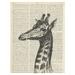 Vintage Dictionary Print - Giraffe