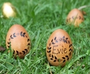 Personalised Wooden Easter Egg - Flower Garland