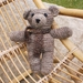 Gorgeous Teddy