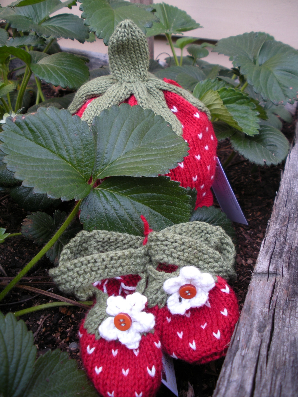 Intarsia Knitting Patterns For Children : Hand Knitted Strawberry Booties Felt