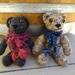 Teddy Bear with Sweater/Scarf