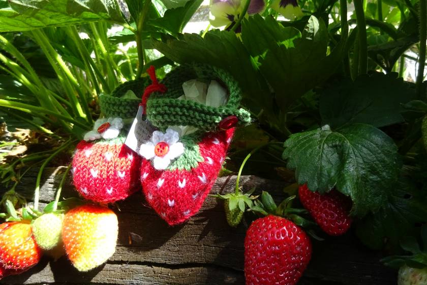 Booties 'Strawberry'