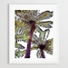 Palm Fern Print By MJ Skehan