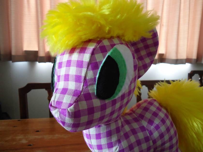 Chaos Pony