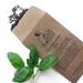 Big Bunny's Sweet Genovese Basil (Herb)