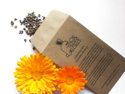 Big Bunny's Calendula Mix (Ornamental, Culinary, Cosmetic)