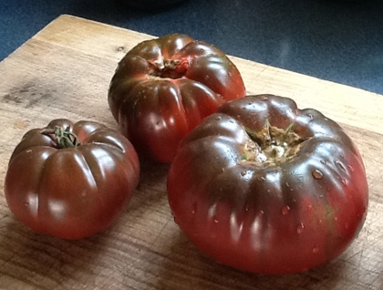 Big Bunny's Black Krim Tomato (Indeterminate)