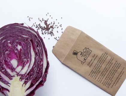 Big Bunny's Red Cabbage (Salad and Winter Vegetable)
