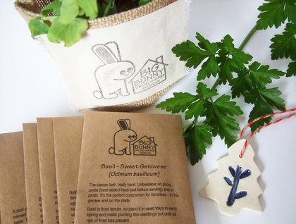 Big Bunny's Great Big Little Seed Sack - Vegetables and Herbs