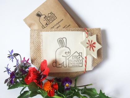 Big Bunny's Great Big Little Seed Sack - Flowers