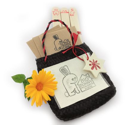 Big Bunny's Flower Seed Gift Kete