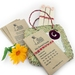 Big Bunny's Super Nifty Gifty Gardener's Pack