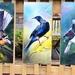 Kiwiana Garden Art, SPECIAL Price for 3 Birds, New Zealand TUI, FANTAIL, KERERU, OUTDOOR Wall ART Panels. Each measuring 50 x 23cm.