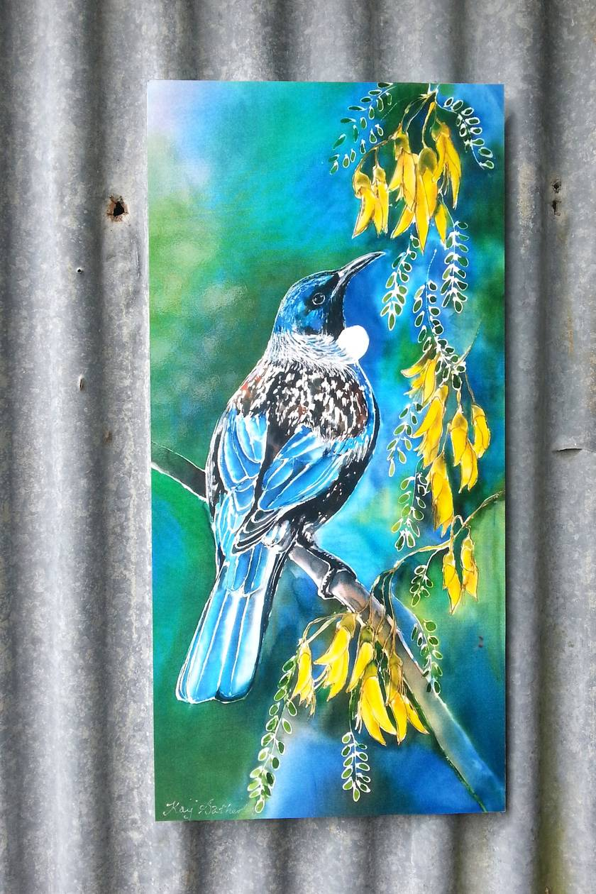 New Zealand Tui Bird Feeding On Kowhai Tree Nectar Filled Flowers Outdoor Garden Patio Wall Art Large 70cm X 32cm Weatherproof