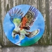 Kiwiana Garden Art, New Zealand KEA, Alpine Parrot. BIRD of the YEAR and ENDANGERED. OUTDOOR Wall ART Panel 45 cm diameter