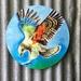 Kiwiana Garden Art, New Zealand KEA, Alpine Parrot. BIRD of the YEAR and ENDANGERED. OUTDOOR Wall ART Panel 30 cm diameter