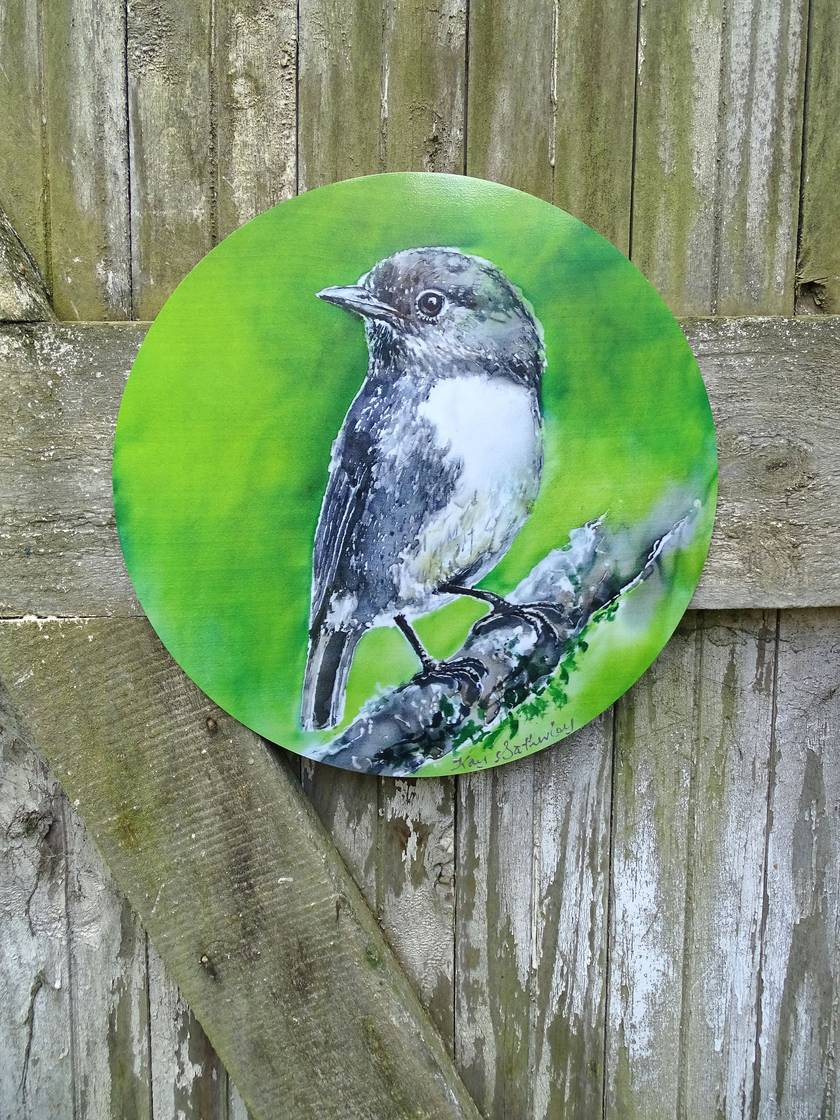New Zealand Robin - Outdoor Circle Art Panel