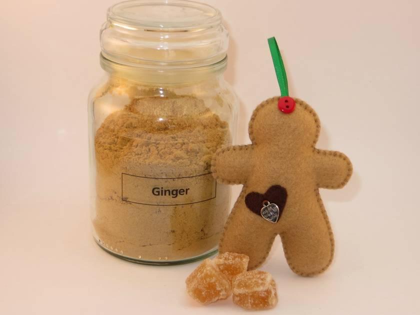 Felt Gingerbread Man Ornament - Sugar Plum