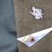Warrior Lapel / Hat Pin / Brooch