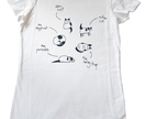Cat of many Postures Women's T-shirt