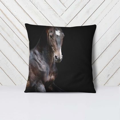 Black Beauty -  Velvet Euro Pillow Cover LEFT