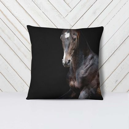 Black Beauty -  Velvet Euro Pillow Cover RIGHT