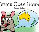 Bruce Goes Home - Book 3, Kiwi Critters series - incl FREE delivery worldwide!