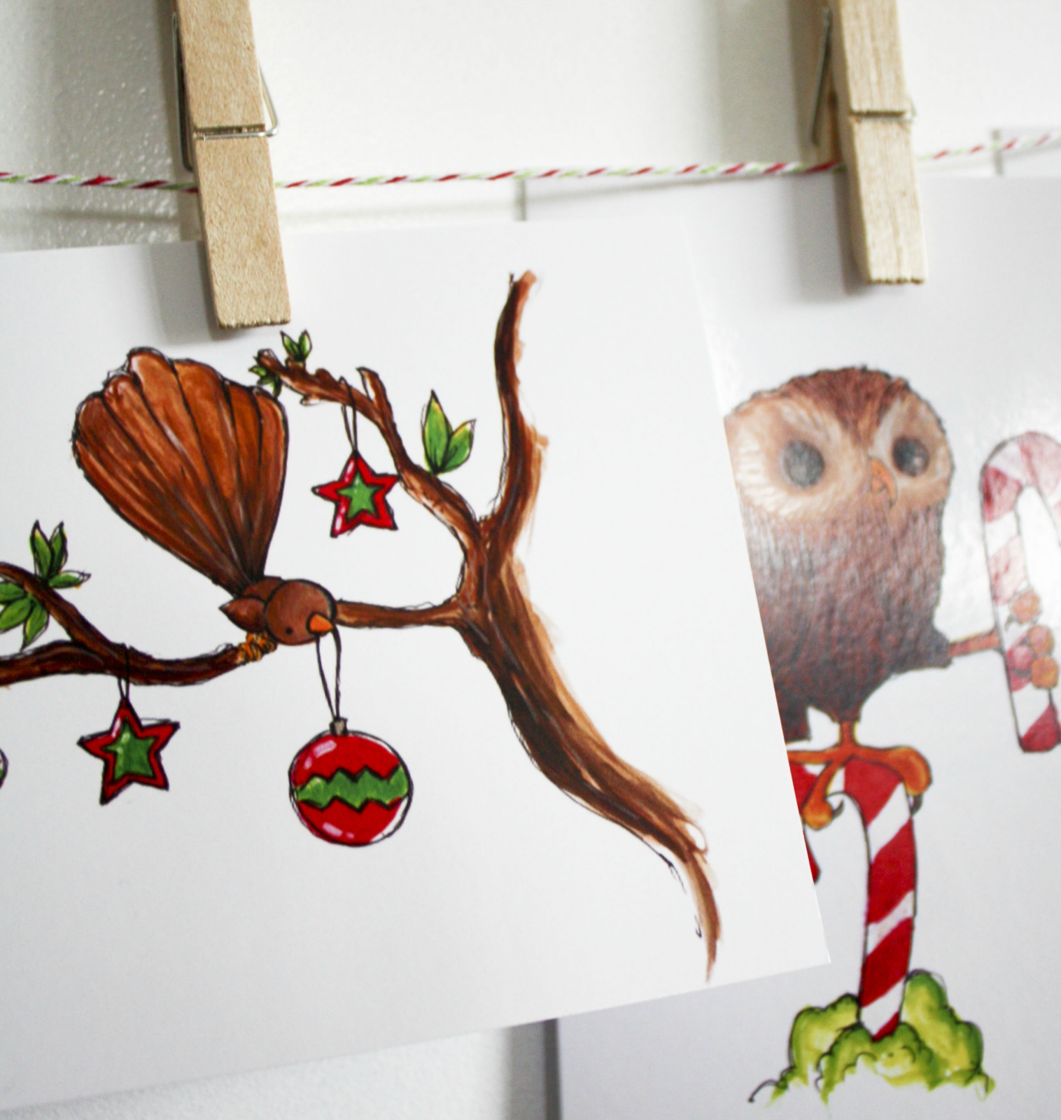 NZ Native Birds Christmas Card Pack With 5 Cards!
