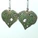 Kawakawa leaf earrings 26mm