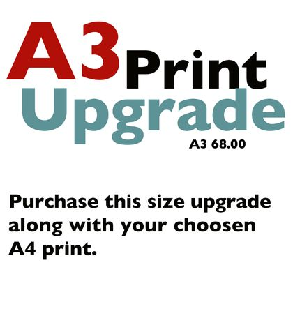 A3 Size Upgrade for Giclee Art Prints