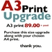 A3 Size Upgrade for Giclee Art Prints  FREE NZ POST