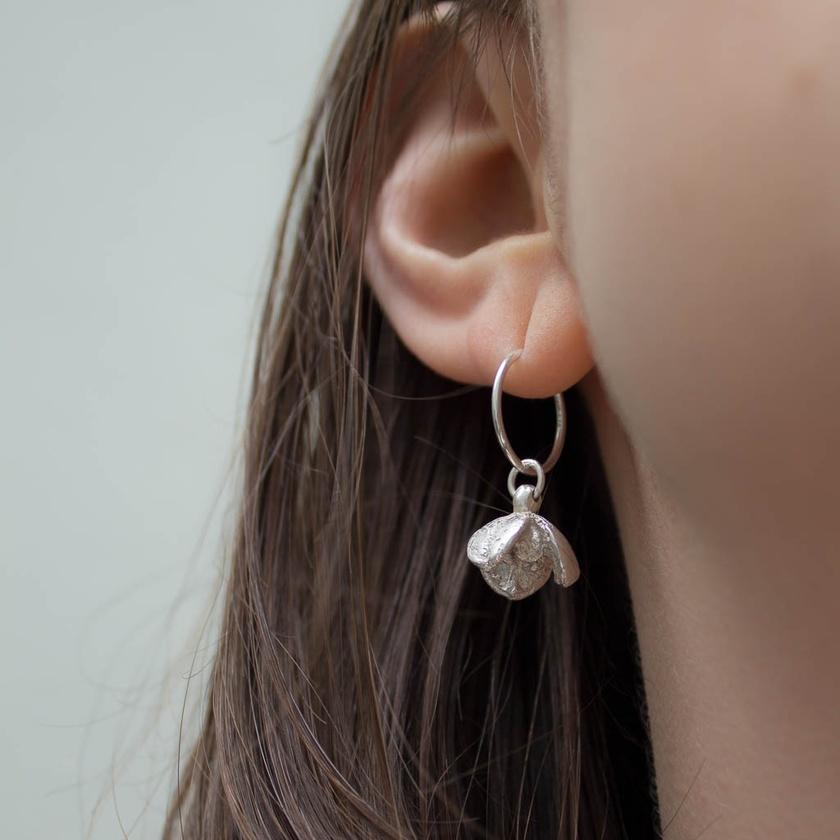 Pittosporum seed pod earrings - sterling silver