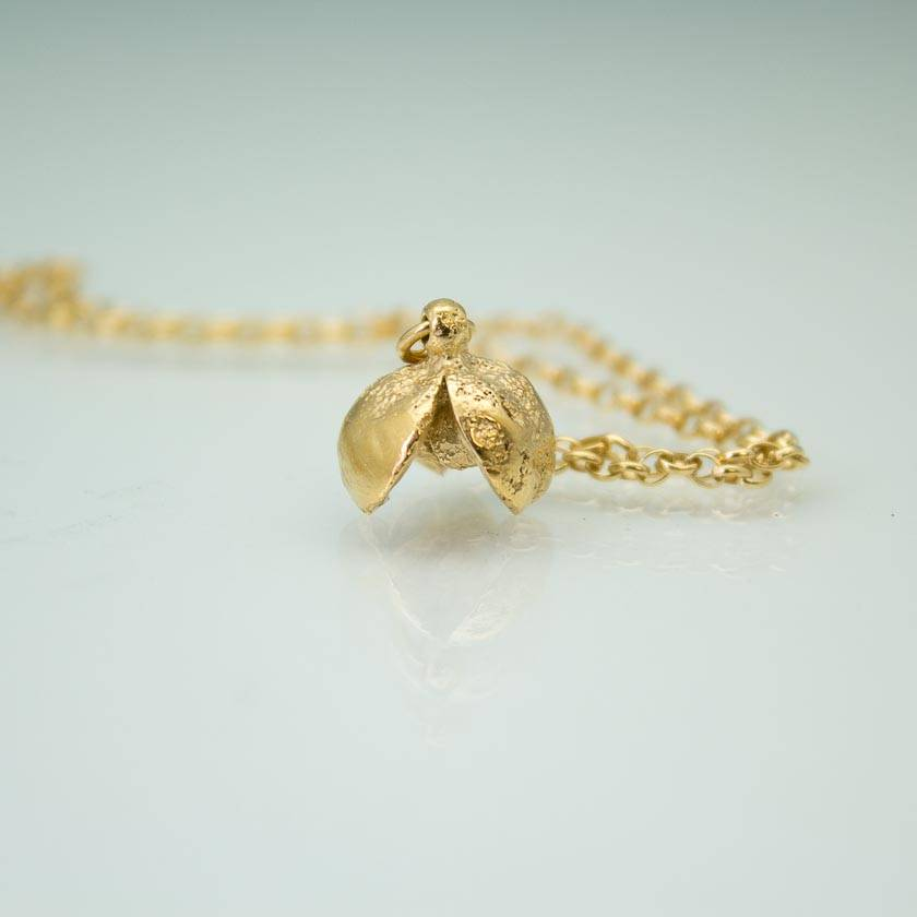Pittosporum seed pod necklace- 14ct gold plated