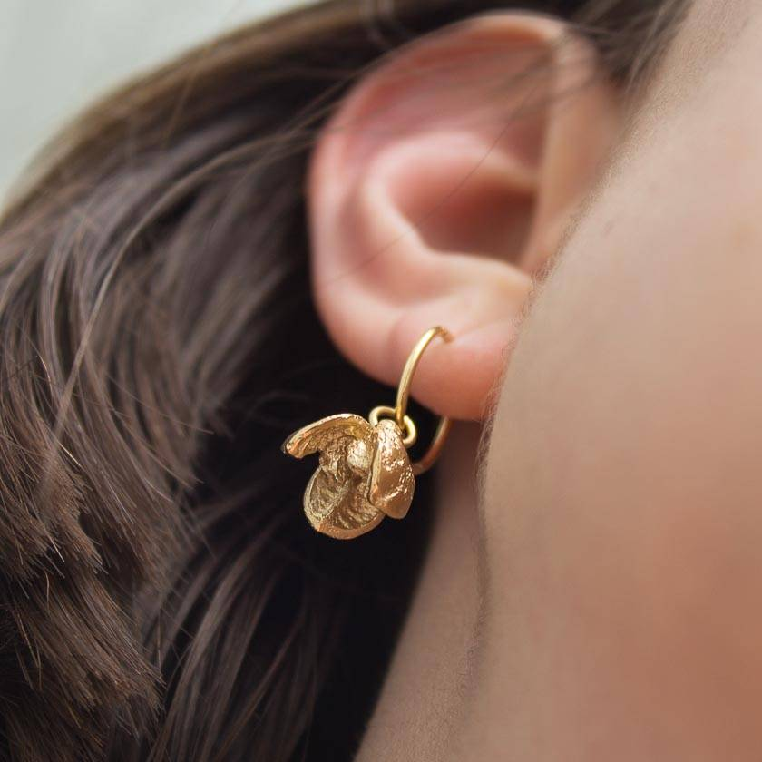 Pittosporum seed pod earrings - 14ct gold plated